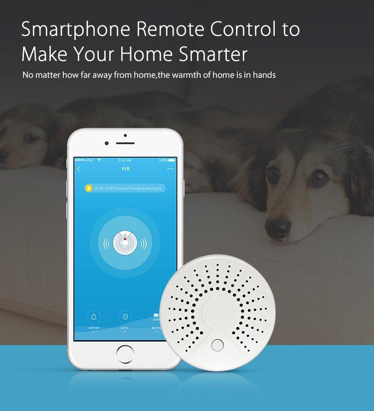 Wi-Fi dumu detektorius